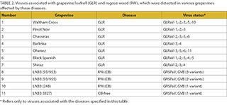 evaluation-of-wine_table2