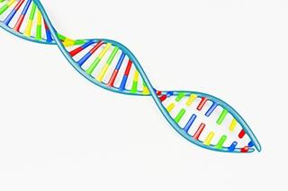 Opsporing & identifisering van wingerdvirusse