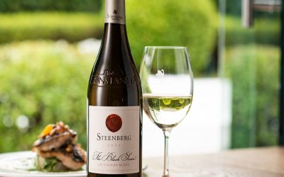 Steenberg unveils 2020 The Black Swan Sauvignon Blanc