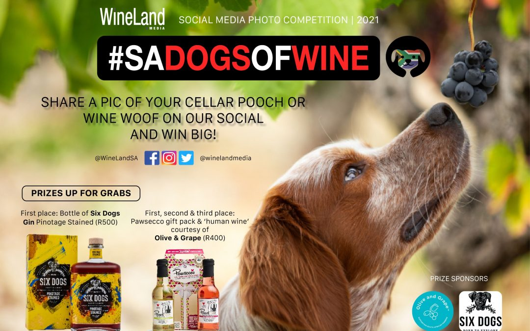 Dog lovers! Enter #SADogsofWine 2021 and WIN!