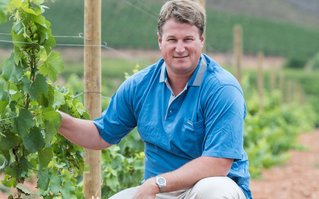 Taking Cape Chardonnay to infinity and beyond